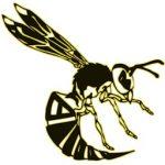Hive Disc Golf Company at Portal Disc Sports